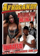 Afro Candy Presents Destructive instinct 2