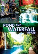 Pond and Waterfall Vision!